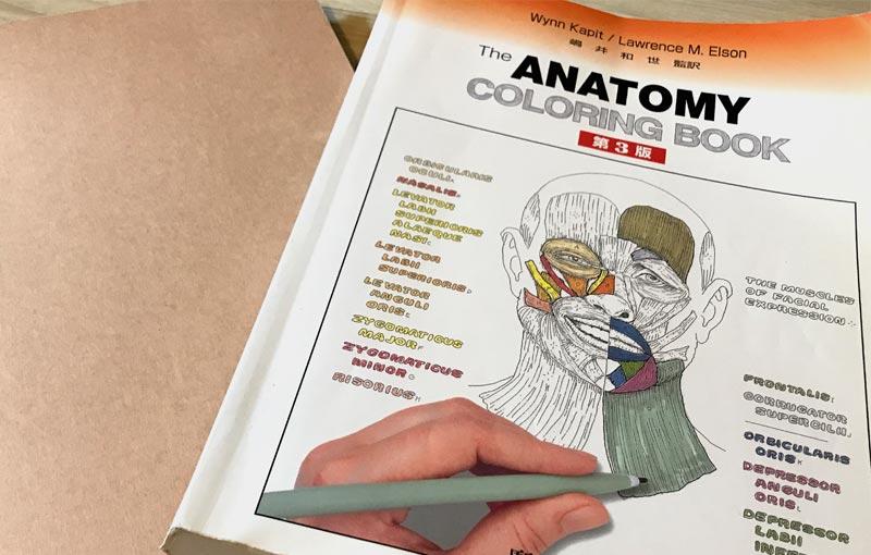 解剖学のテキストとノート