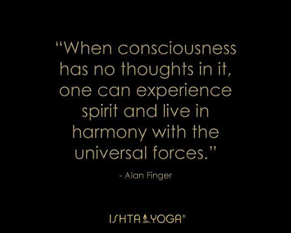 2013 Ishta yoga quotes by Alan Finger 12